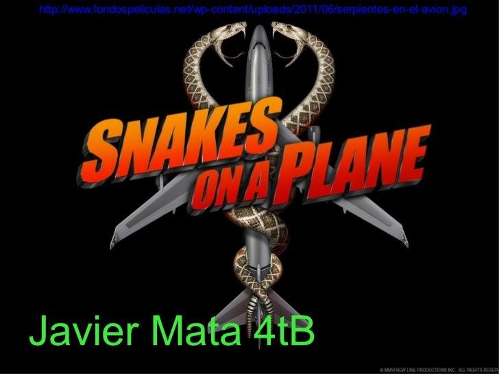 http://www.fondospeliculas.net/wp-content/uploads/2011/06/serpientes-en-el-avion.jpgJavier Mata 4tB