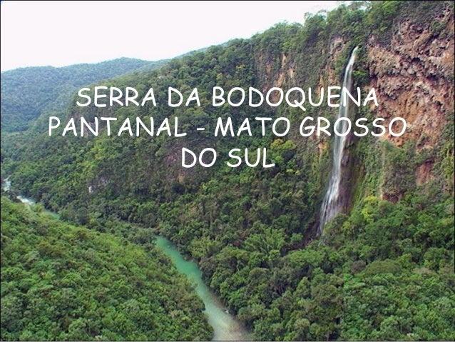 SERRA DA BODOQUENAPANTANAL - MATO GROSSO         DO SUL