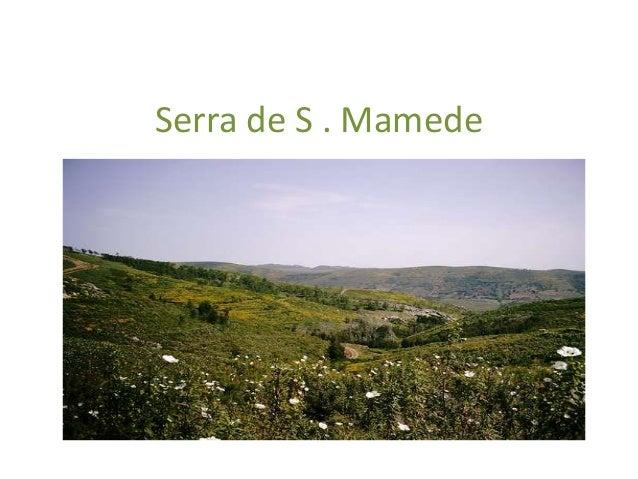 Serra de S . Mamede