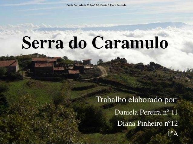 Escola Secundaria /3 Prof. DR. Flávio F. Pinto Resende  Serra do Caramulo  Trabalho elaborado por: Daniela Pereira nº 11 D...