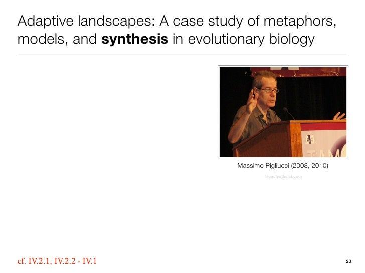 Adaptive Landscapes A Case Study Of Metaphors Models