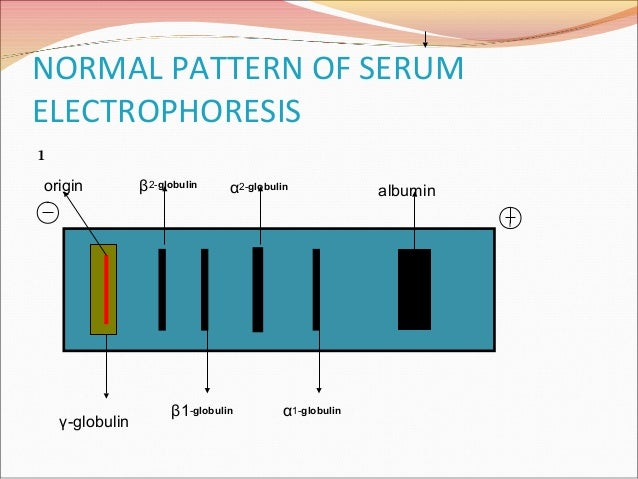 Serum protein electrophoresis & their clinical importance