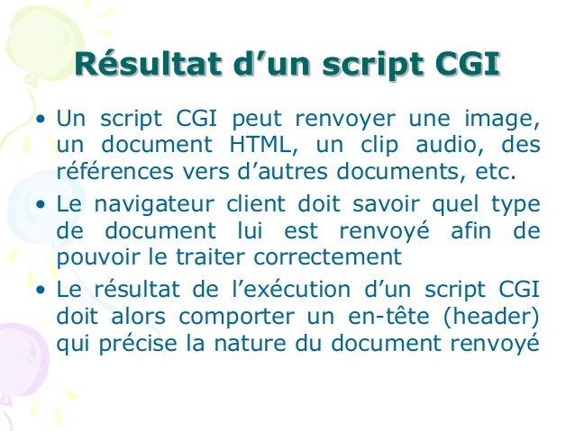 Résultat d'un script CGI • Un script CGI peut renvoyer une image, un document HTML, un clip audio, des références vers d'a...