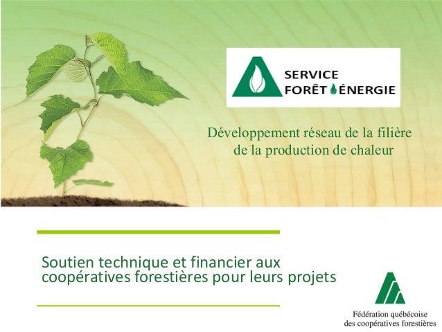 Soutien technique et financier aux coopératives forestières pour leurs projets Développement réseau de la filière de la pr...
