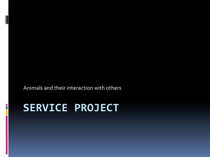 Service Project<br />Animals and their interaction with others<br />