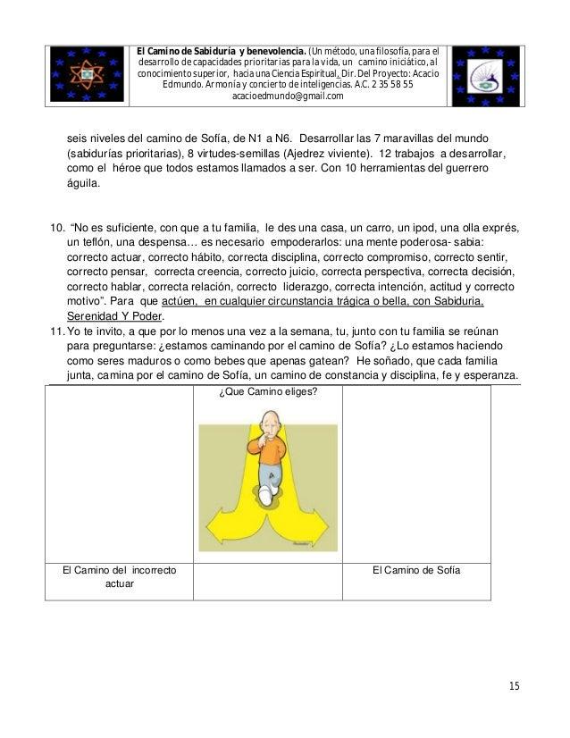 Lujoso Curso De Anatomía Y Fisiología Héroe Molde - Imágenes de ...