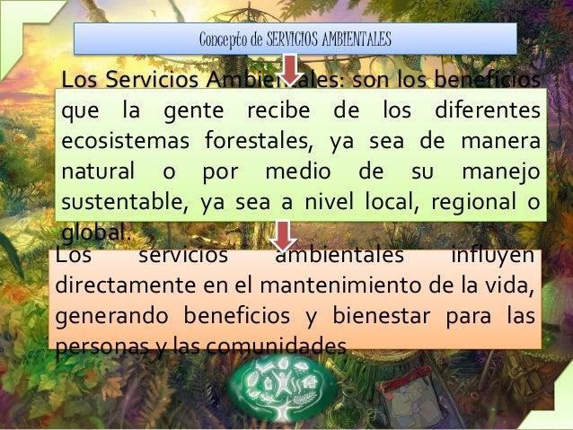 Servicios Ambientales Slide 2