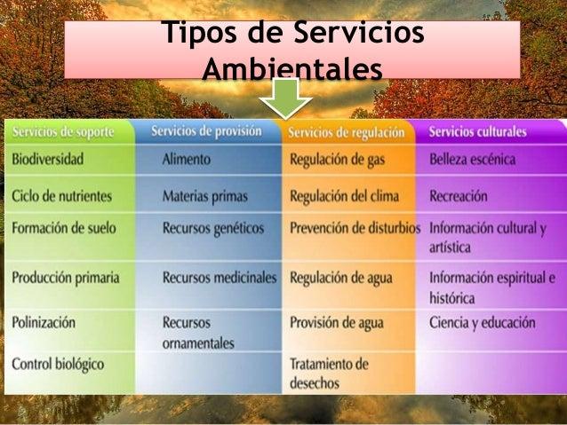 Servicios ambientales for Tipos de servicios de un hotel