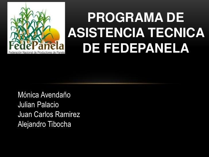 PROGRAMA DE ASISTENCIA TECNICA DE FEDEPANELA<br />Mónica Avendaño<br />Julian Palacio<br />Juan Carlos Ramirez<br />Alejan...