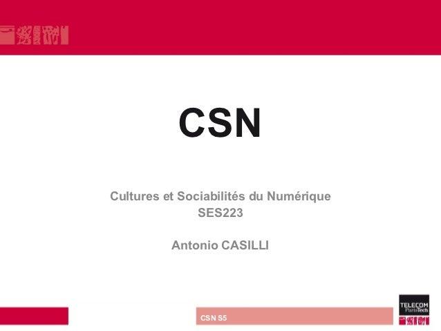 CSN         Cultures et Sociabilités du Numérique                        SES223                        Antonio CASILLIdire...