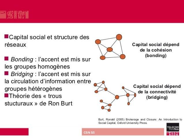 Capital   social et structure desréseaux                                                             Capital social dépen...