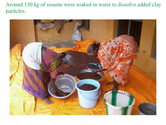 Around 130 kg of sesame were soaked in water to dissolve added clay particles.