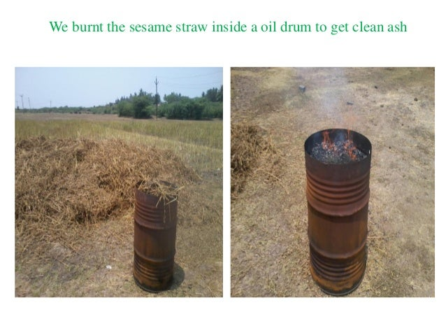We burnt the sesame straw inside a oil drum to get clean ash