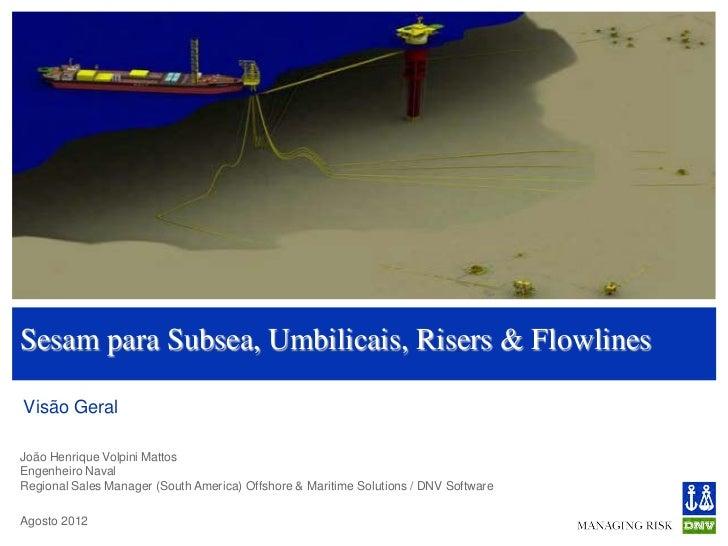 Sesam para Subsea, Umbilicais, Risers & FlowlinesVisão GeralJoão Henrique Volpini MattosEngenheiro NavalRegional Sales Man...