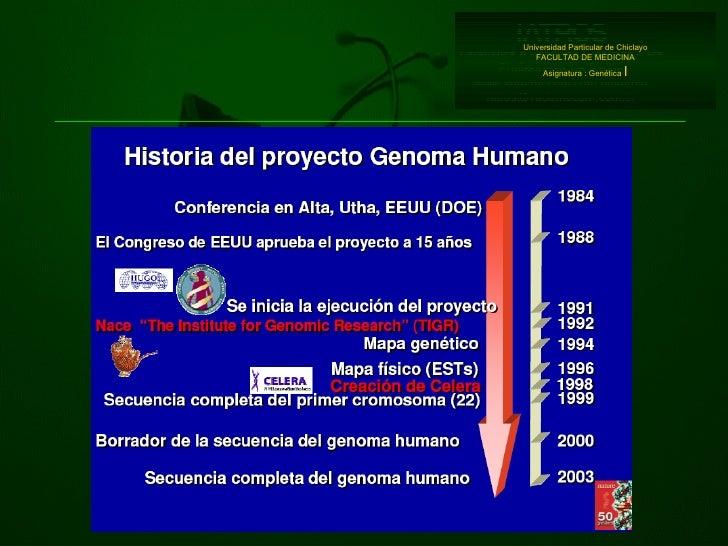 Universidad Particular de Chiclayo FACULTAD DE MEDICINA Asignatura : Genética  I