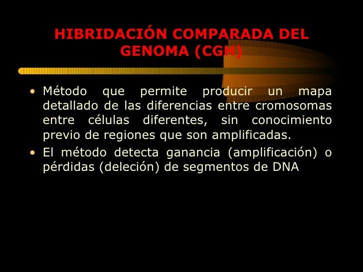 HIBRIDACIÓN COMPARADA DEL GENOMA (CGH) <ul><li>Método que permite producir un mapa detallado de las diferencias entre crom...