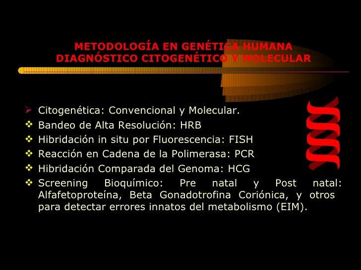 <ul><li>Citogenética: Convencional y Molecular. </li></ul><ul><li>Bandeo de Alta Resolución: HRB </li></ul><ul><li>Hibrida...