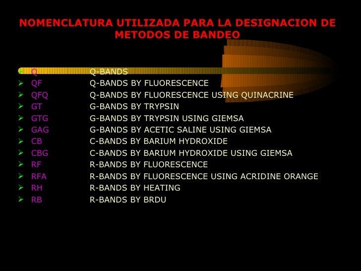 <ul><li>Q Q-BANDS </li></ul><ul><li>QF Q-BANDS BY FLUORESCENCE </li></ul><ul><li>QFQ Q-BANDS BY FLUORESCENCE USING QUINACR...