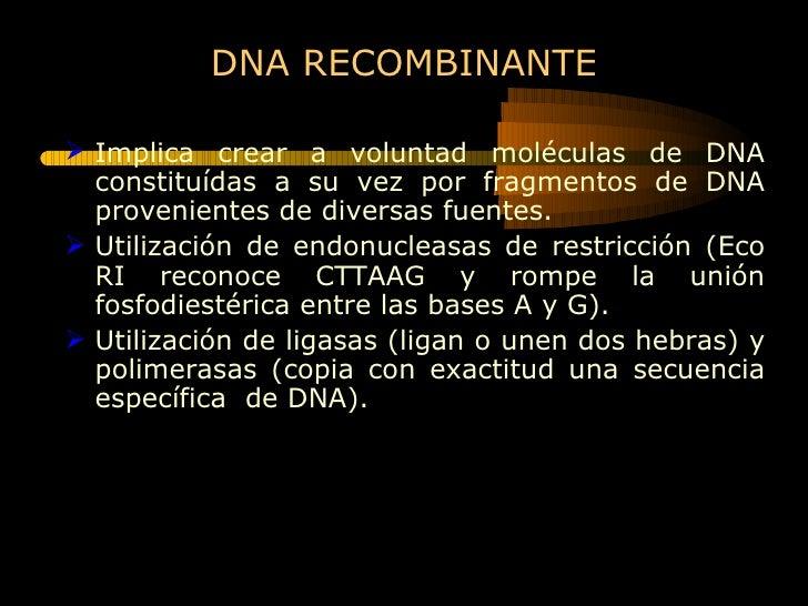 DNA RECOMBINANTE <ul><li>Implica crear a voluntad moléculas de DNA constituídas a su vez por fragmentos de DNA proveniente...