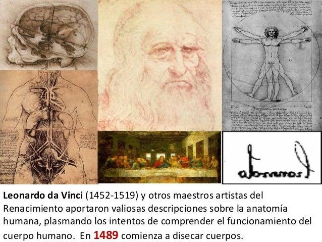 Resultado de imagen para Leonardo da Vinci (1452-1519) + sus indagaciones sobre anatomía humana,