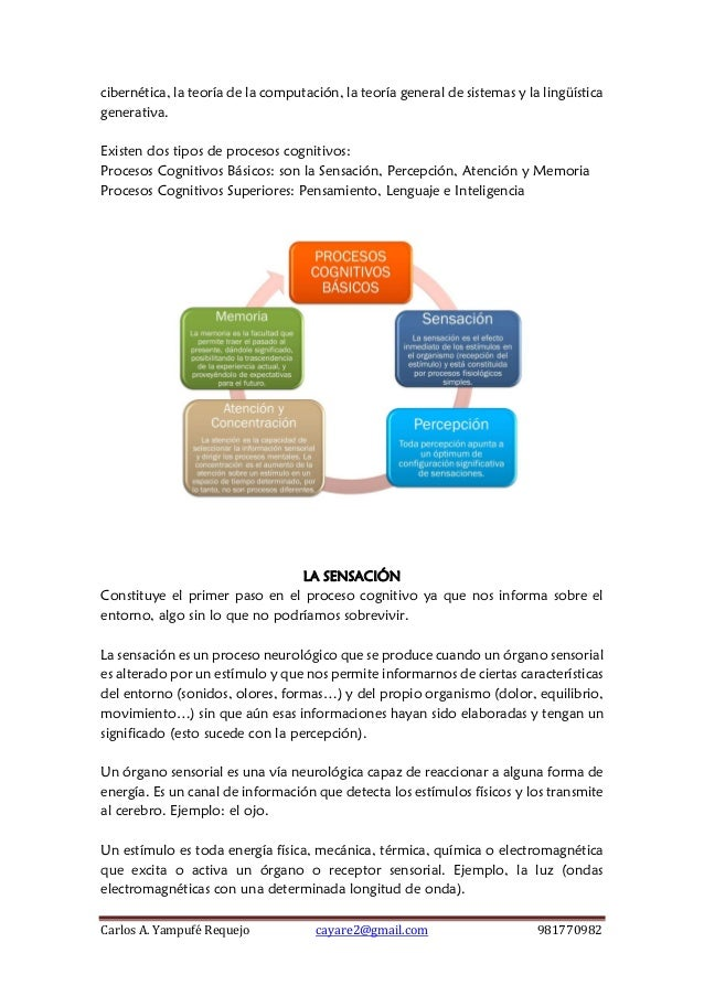Sesión 4 procesos cognitivos básicos y superiores Slide 2