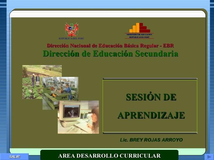 SALIR Dirección Nacional de Educación Básica Regular - EBR Dirección de Educación Secundaria MINISTERIO DE EDUCACIÓN REPÚB...