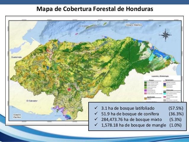Impactos del cambio climtico en los bosques y su contribucin a la s