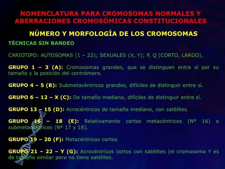 HERENCIA MITOCONDRIAL</li></li></ul><li>ESTUDIO DE MELLIZOS<br /><ul><li>Un método sencillo para evaluar las diferencias f...