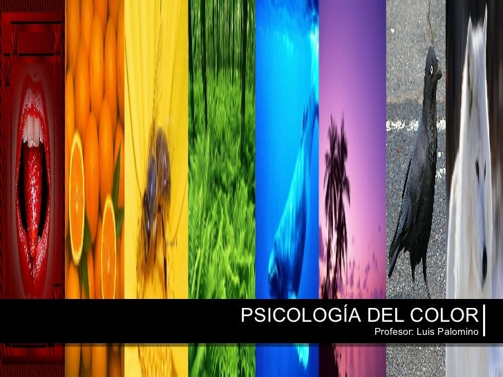 PSICOLOGÍA DEL COLOR Profesor: Luis Palomino