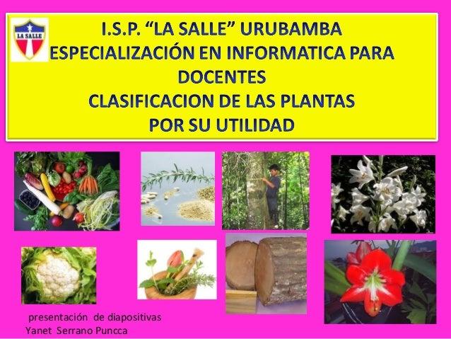 Sesion 2 clasificacion de planta for Clasificacion de las plantas ornamentales