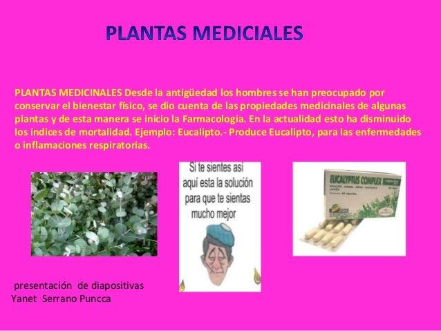 Sesion 2 Clasificacion De Planta