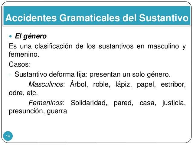 Accidentes Gramaticales del Sustantivo 14  El género Es una clasificación de los sustantivos en masculino y femenino. Cas...