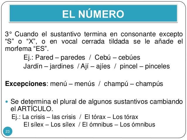 """23 3° Cuando el sustantivo termina en consonante excepto """"S"""" o """"X"""", o en vocal cerrada tildada se le añade el morfema """"ES""""..."""