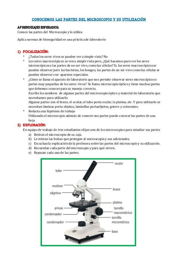 CONOCEMOS LAS PARTES DEL MICROSCOPIO Y SU UTILIZACIÓN APRENDIZAJES ESPERADOS: Conoce las partes del Microscopio y lo utili...