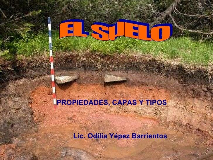 Lic. Odilia Yépez Barrientos IMPORTANCIA DEL AGUA CAMBIOS DE ESTADO DEL AGUA EL SUELO PROPIEDADES, CAPAS Y TIPOS Lic. Odil...