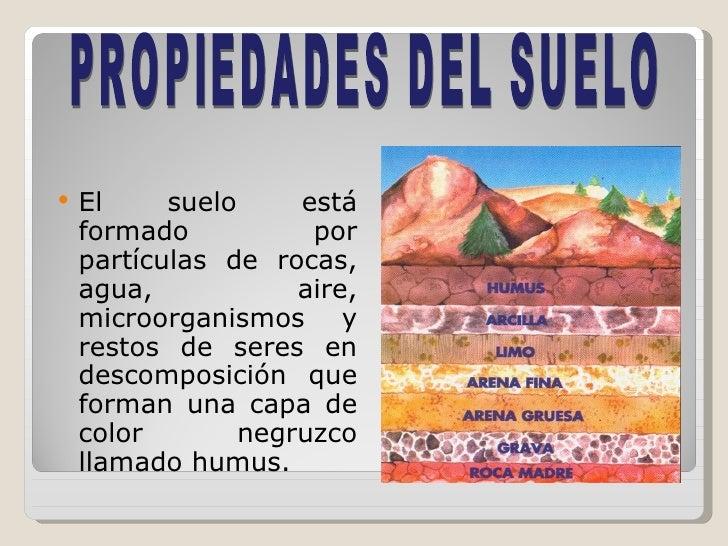 clases de suelos