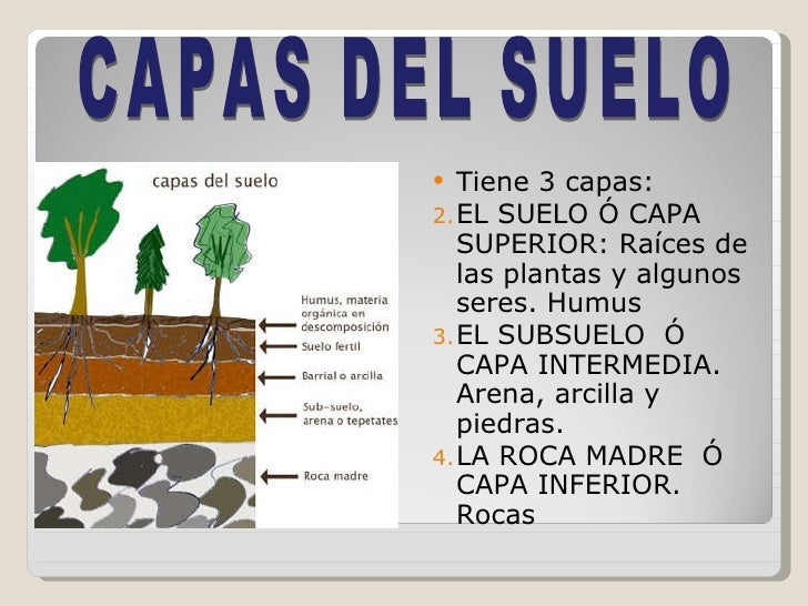 Clases de suelos for El suelo y sus capas