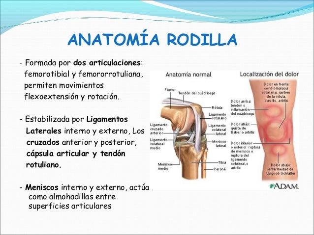 2014-11-06) Exploración de rodilla (PPT))