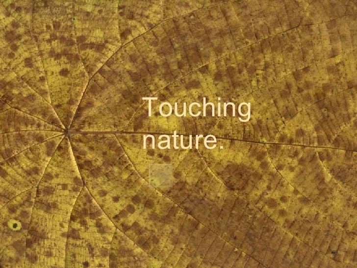 Touching nature.