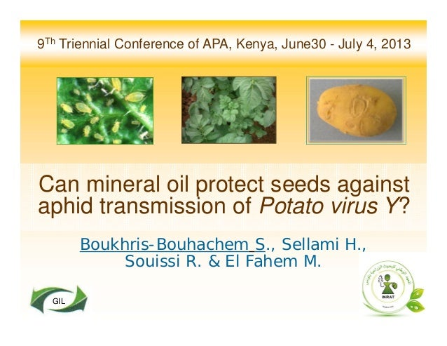 9Th Triennial Conference of APA, Kenya, June30 - July 4, 2013 Can mineral oil protect seeds against aphid transmission of ...