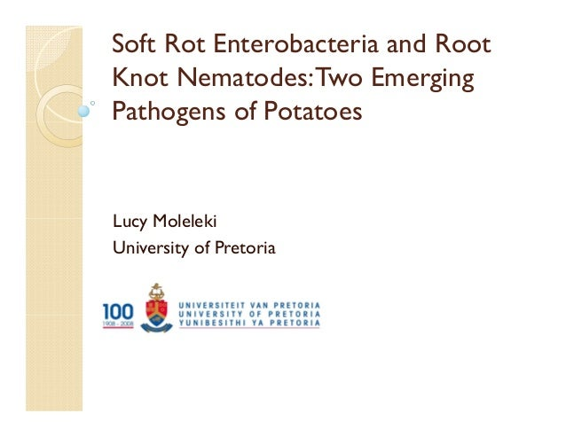 Soft Rot Enterobacteria and Root Knot Nematodes:Two Emerging Pathogens of Potatoes Lucy Moleleki University of Pretoria