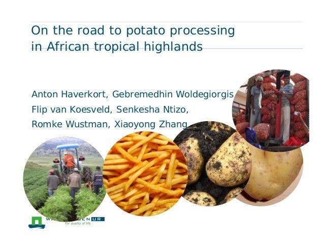 On the road to potato processing in African tropical highlands Anton Haverkort, Gebremedhin Woldegiorgis Flip van Koesveld...