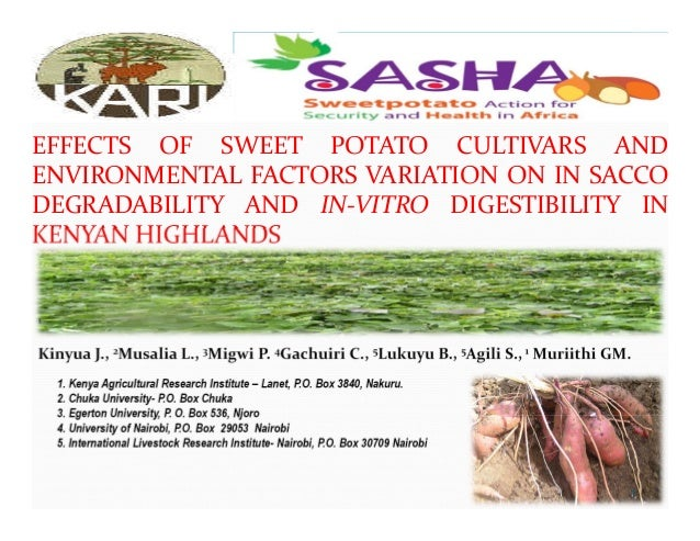 EFFECTS OF SWEET POTATO CULTIVARS AND ENVIRONMENTAL FACTORS VARIATION ON IN SACCO DEGRADABILITY AND IN‐VITRO DIGESTIBILITY...