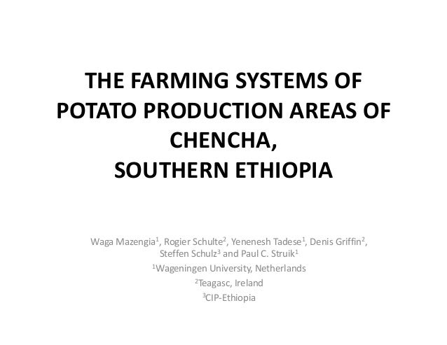 THE FARMING SYSTEMS OF  POTATO PRODUCTION AREAS OF  CHENCHA,  SOUTHERN ETHIOPIA Waga Mazengia1, Rogier Schulte2, Yenenesh ...