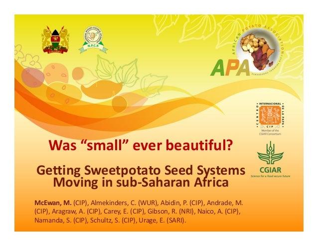 """Was""""small""""everbeautiful? GettingSweetpotatoSeedSystems Movinginsub‐SaharanAfrica McEwan,M.(CIP),Almekinders,..."""