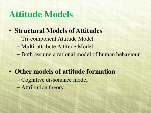 consumer attitude and beliefs Belief, affect, and attitude:  series of articles published in the journal of consumer psy-chology  beliefs and attitude results.