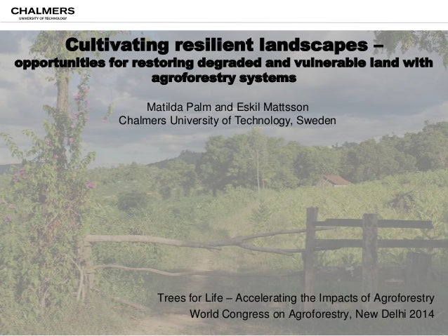 Cultivating resilient landscapes –  opportunities for restoring degraded and vulnerable land with agroforestry systems Mat...