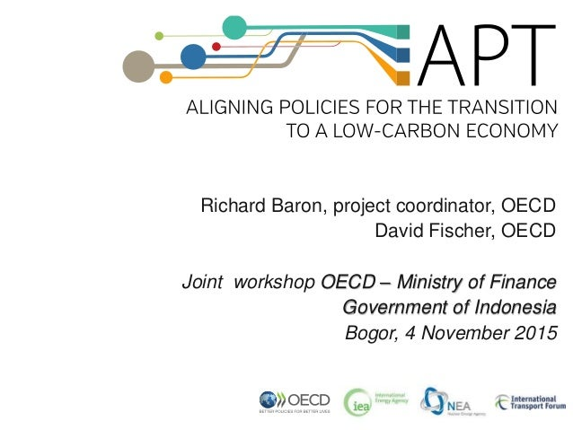 Richard Baron, project coordinator, OECD David Fischer, OECD Joint workshop OECD – Ministry of Finance Government of Indon...
