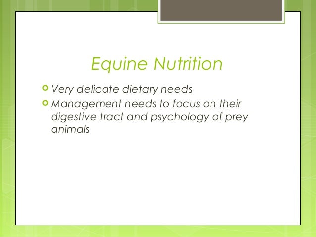 Equine Nutrition  Very delicate dietary needs  Management needs to focus on their digestive tract and psychology of prey...