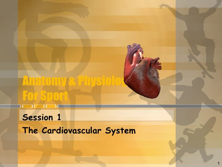 Anatomy & Physiology For Sport Session 1 The Cardiovascular System